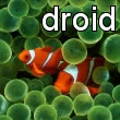 Droid Clownfish Wallpaper