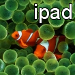 Apple iPad Clownfish Wallpaper