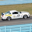 #37 Ford Mustang