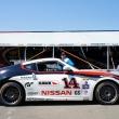 #14 Doran Racing Nissan 370Z
