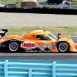 #77 Doran Ford Dallara