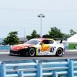 #42 Sahlen\'s Mazda RX-8