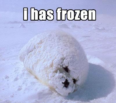 SOLVED: Windows 7 Freezing When Idle
